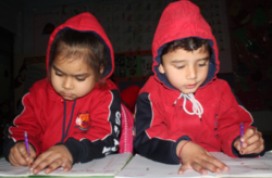 Primary Level Education Course