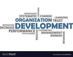 Organization Development Consultancy Services