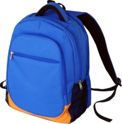 Rexine School Bag