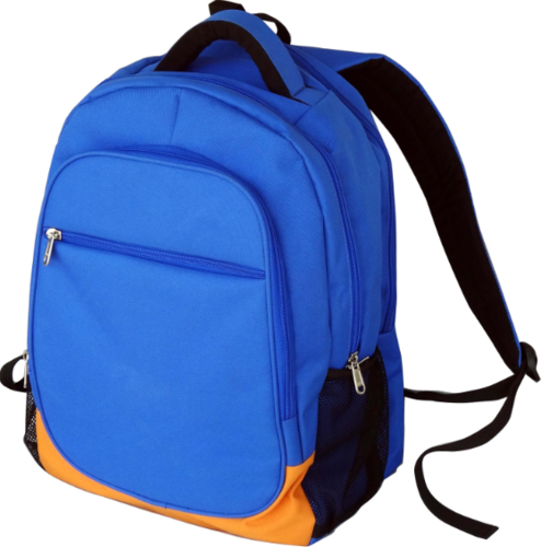 Nylone Rexine School Bag