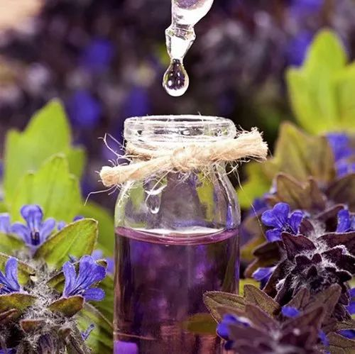 Pale Yellow Lavender Oil for Anti-inflammatory