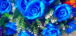 Wall Bunch Blue Rose