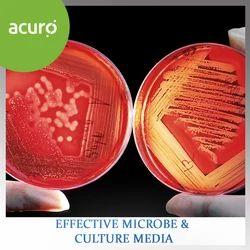 Effective Microbe