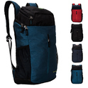 COSMUS Sedna Dx Polyester 39 Ltr Casual Laptop Backpack