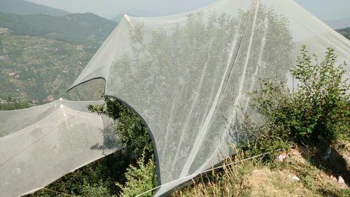ANTI HAIL NET for Apple Trees