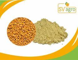 SV AGRO Methi Powder(Fenugreek), Packaging Size: 25 kg, Packaging: Packet