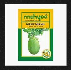 Brinjal Hybrid Mahy Nikhil