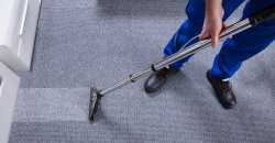 Carpet cleaning Service, in NCR
