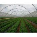 Anti Hail Agro Shade Net