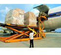 Cargo Agents Service