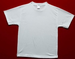 White Unisex Round Neck T Shirt