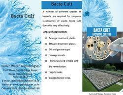 Bacteria Waste Water Treatment
