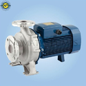 Ss Magnetic Drive Sealless Centrifugal Pump, 1 Hp