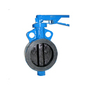 SS Wafer Type Butterfly Valve