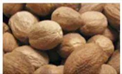 Nutmeg Refrigeration Services