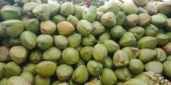 Tender Coconut Mhaisoor
