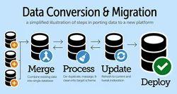 MLM Data Migration Service