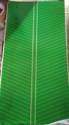Green,Silver Green Buffet Paper Plate Raw Material