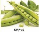 Mangal Dev Research Vegetable Seed Mrp-10