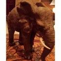 Brown Wooden Elephant Statue For Home, Restaurant, Size: 10 Inch (height )