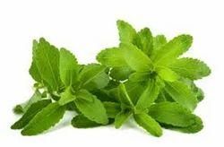 Stevia Improver
