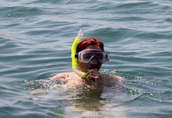 Snorkeling Tour Services