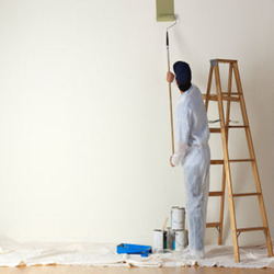Wall Painting Service, Location Preference: Local Area, Paint Brands Available: Asian Paints,Dr.Fixit