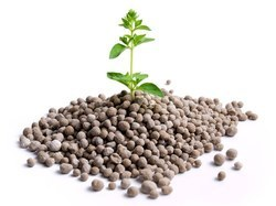 Micronutrient Fertilizers