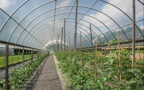 Transparent Greenhouse Film