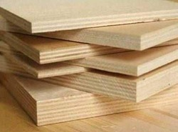 local Brown Hardwood Plywoods, Matte, Thickness: 6-25 Mm