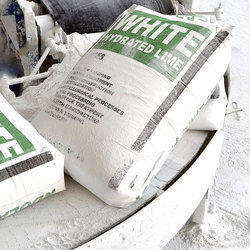 Lime Powder at Best Price in India