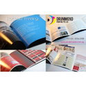 Corporate Brochure Printing Service