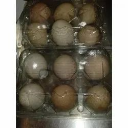 Hatching Eggs - Wholesale Price & Mandi Rate for Hatching Eggs