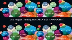 Live Project Training Service