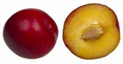 Pulm Fruity Flavour