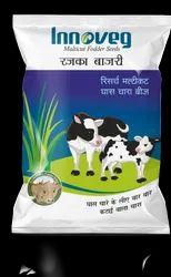 Rajka Bajri Seed Fodder Seeds