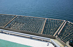 Offshore Safety Net
