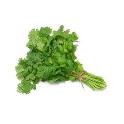 Coriander Leaves, Packaging: Plastic Bag Or Polythene