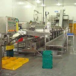 Mango Processing Plant, Automation Grade: Automatic