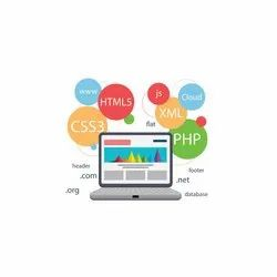 Web Application Development Service for Personal Or Business