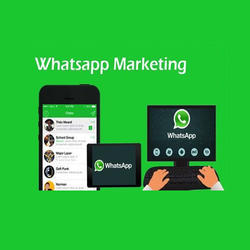 Bulk Whatsapp Marketing Service