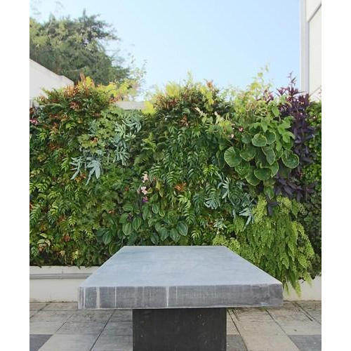 Outdoor Vertical Garden At Rs 200/square Feet