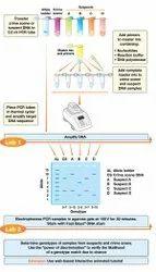Long PCR Teaching Kit