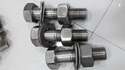 SS 310 Stainless Steel Bolts