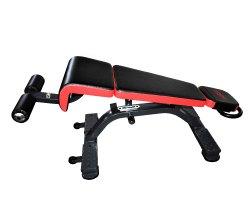 Multi Adjustable Ab Bench