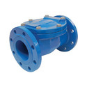 Cast Iron Non Return Valve