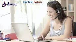 Offline Data Entry Projects with Technical Support