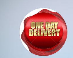 One Day Delivery Service