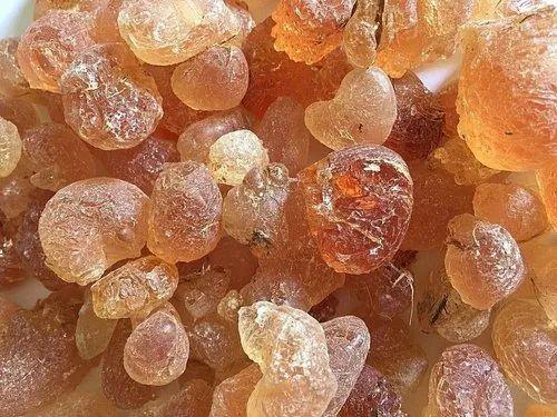 Gum Arabic, Gum Acacia, अरबी गोंद in Vashi, Navi Mumbai , P. J. Enterprises  | ID: 8730976688