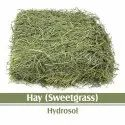 B-Urbon Hay - Sweetgrass Floral Water
